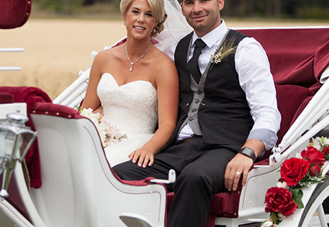 getting engaged in a horse drawn carriage