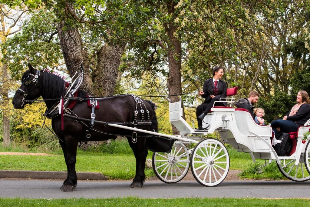 Tally-Ho Tours – We are the oldest sightseeing tour company